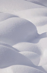 Photograph of Snow taken by Paul Burwell